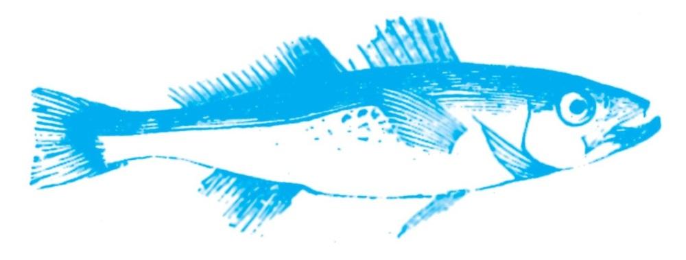 kalastus2