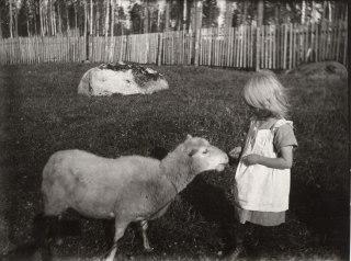 Tyttö ja lammas Mäntyharjussa 1920-luvulla. Kuva: Mäntyharjun museo.