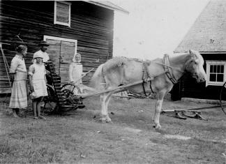 Heinäntekoon lähdössä, hevosen perässä niittokone. Kuva: Mäntyharjun museo.