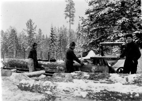 Tukkien sahausta laudoiksi. Kuva: Mäntyharjun museo.