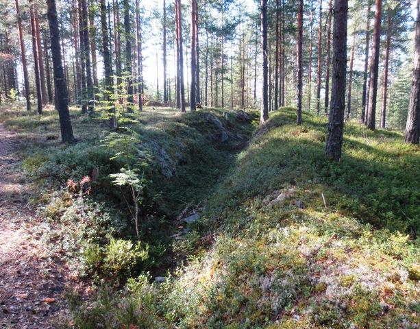 Ensimmäisen maailmansodan aikaiset linnoitteet ovat vuosikymmenten kuluessa maastoutuneet hyvin.